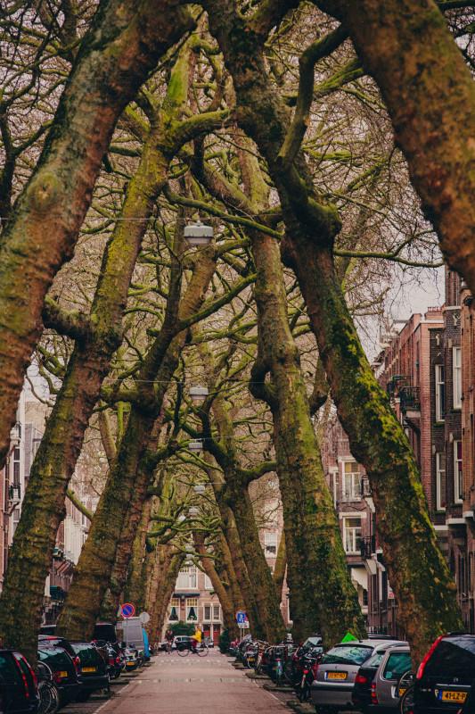 Amsterdam-web-14